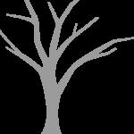 Landscape Tree
